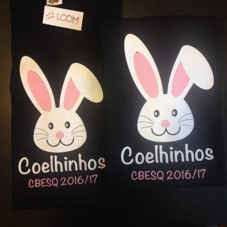 Sala Coelhinhos – CBESQ